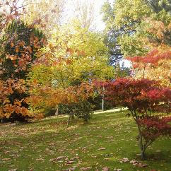 Maesfron open through the seasons