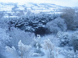 Winter at Maesfron